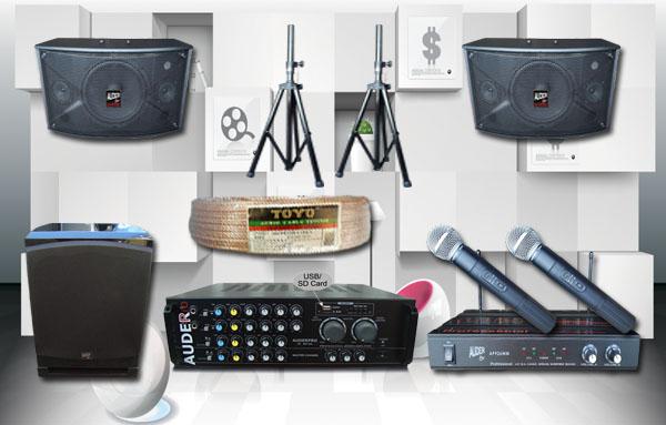 Alat Karaoke L Cari Sound System Platinum Audio Sound