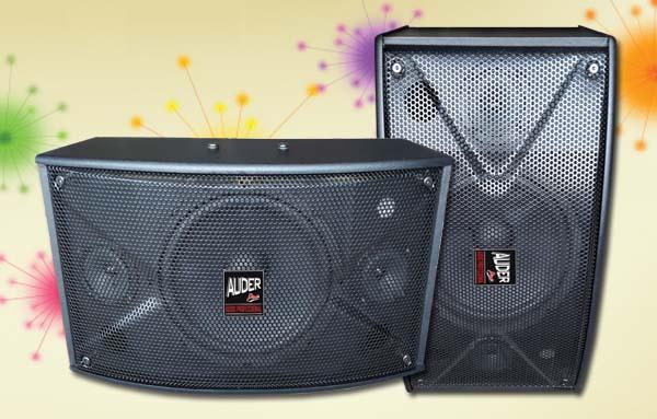 speaker pasif karaoke professional ap10k 10 inch